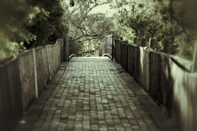 IMG_9142_Snapseed